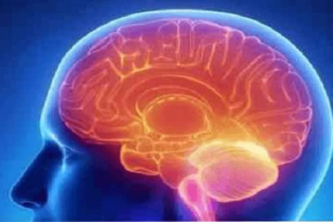 व्यायाम आपके मस्तिष्क को कैसे प्रभावित करता है?